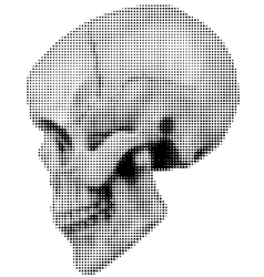 skull halfton profile vector image vector image
