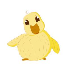 Cute baby duck vector