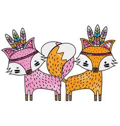 Grated fox animals couple together with feathers vector