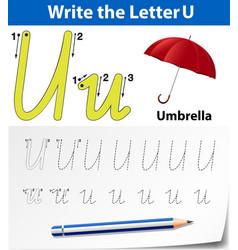 Letter b tracing alphabet worksheets vector
