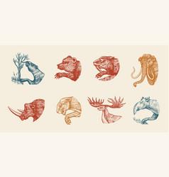 mammoth or extinct elephant woolly rhinoceros vector image