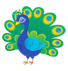 Stylized peacock topic image 1 vector