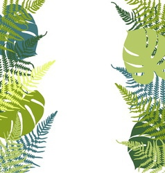 Fern and monstera background vector image vector image