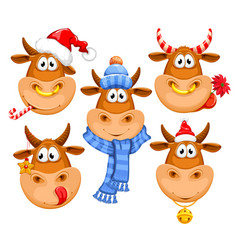 cartoon bulls characters set for christmas vector image
