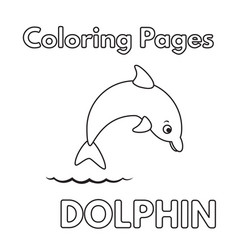 cartoon dolphin coloring book vector image