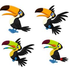 cartoon toucan collection set vector image