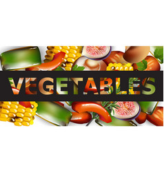 healthy spring vegetables banner realistic vector image