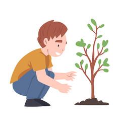 Little boy caring tree sapling growing in soil vector