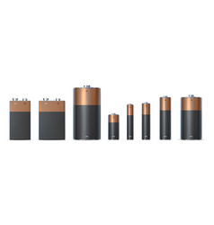 Realistic alkaline battery sizes aa aaa and d vector