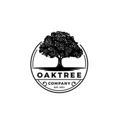 Vintage retro emblem oak banyan maple tree vector