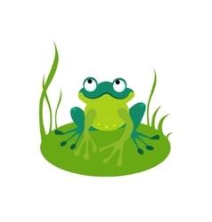 Green Cartoon Frog vector image