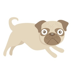 Cute little pug dog vector