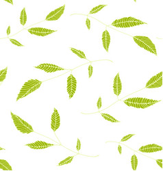 floral seamless pattern background green on white vector image