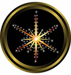 star button vector image vector image