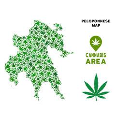 cannabis mosaic peloponnese peninsula map vector image