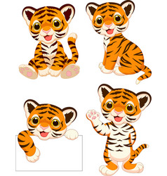 Cartoon baby tigers collection set vector
