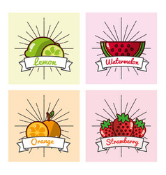 collection fruits lemon orange watermelon and vector image