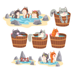Funny cats taking japanese hot spring bath set vector