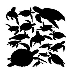 green sea turtle animal silhouettes vector image