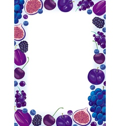 Lilac fruit and berries frame vector image vector image