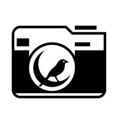 Photo camera with bird in the lens icon vector image