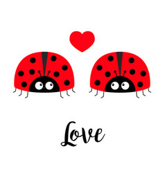 two red lady bug ladybird icon set couple with vector image