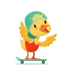 little yellow duck chick in blue cap skateboarding vector image