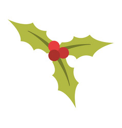 holly plant christmas related icon image vector image
