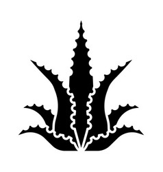 Aloe vera glyph icon fleshy succulent exotic vector