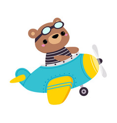 Cute bear animal with goggles flying on airplane vector
