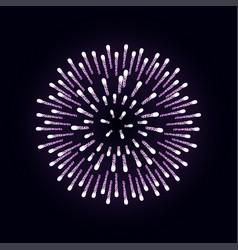 firework is bursting with sparkles on dark night vector image