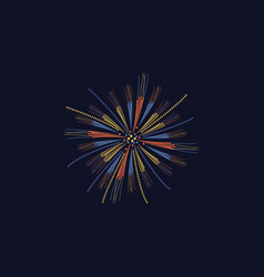 party celebration symbol bright firework vector image