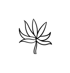 plant leaf hand drawn sketch icon vector image