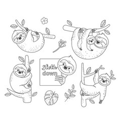 Set of outline sloth sitting on a branch coloring vector