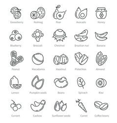 super food icons berries nuts beans ingredients vector image