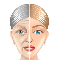 young and old woman face aging concept isolated vector image