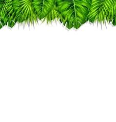 Frame Tropical Leaves Summer Background vector image