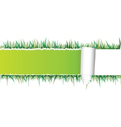 tearing paper and grass vector image