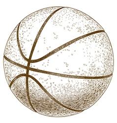 engraving basketball ball vector image