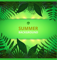 abstract of summer time background with leaves vector image