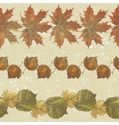 autumn leaves borders vector image