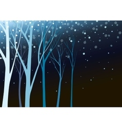 Beautiful nature in night vector image vector image