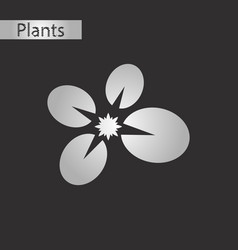 black and white style icon of water lily vector image