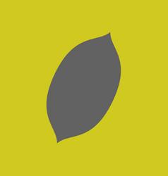 Flat lemon fresh lemon fruits vector