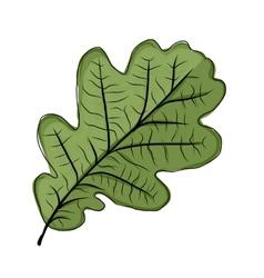 Oak leaf green sketch for your design vector