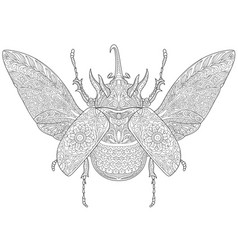 rhinoceros beetle adult coloring page vector image
