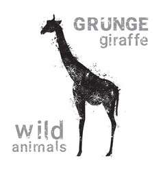 silhouette giraffe in grunge design style animal vector image