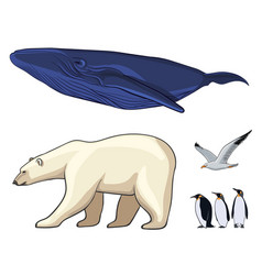 colorful arctic animals set vector image vector image