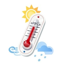 Thermometer show temperature vector image vector image