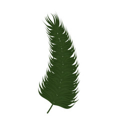 tropical leaves icon vector image